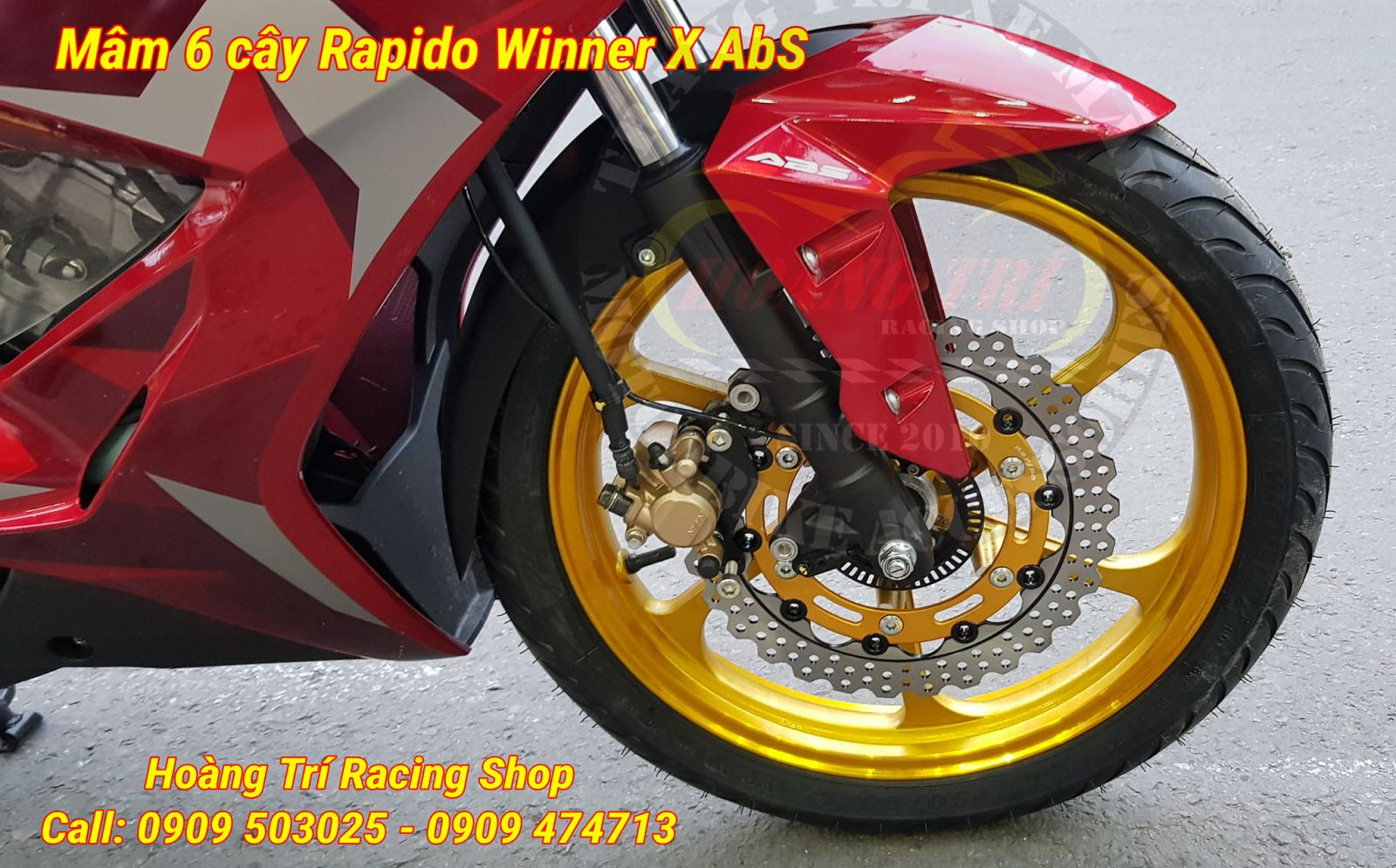 6-tree Rapido wheels fitted as standard for Winner X ABS version